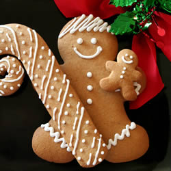 Eileen Spicy Gingerbread Cookies