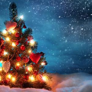 Christmas Wishes Tree Wallpaper